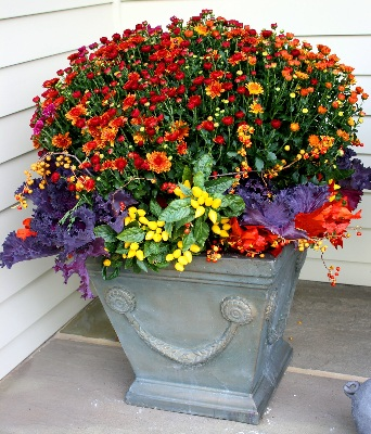 Fall Containter A Fall Container B ... & Fall Flower Pots That Pop