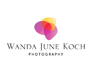 Wandas Logo