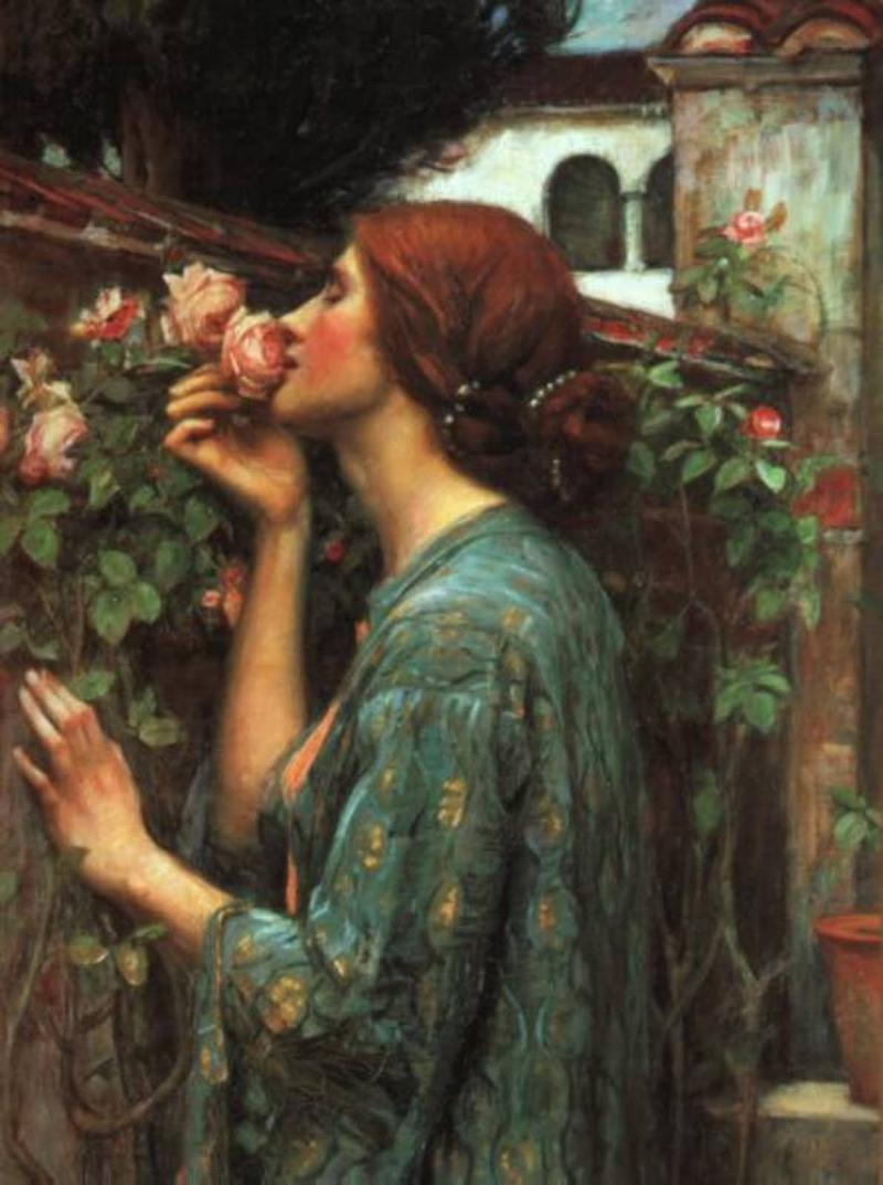 My Sweet Rose by J. W. Waterhouse