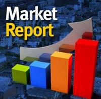 Market Report Icon
