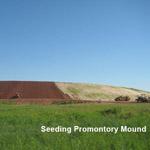 seeding mound