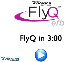 FlyQ in 3 Minutes