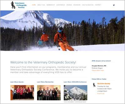 VOS website