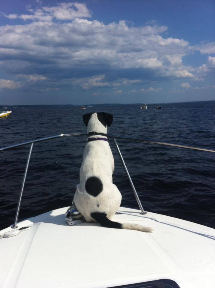 Pixie boat