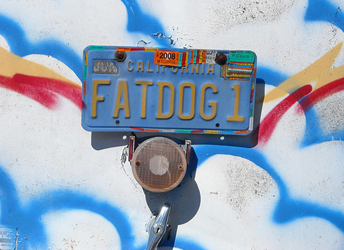 Fat Dogs tag