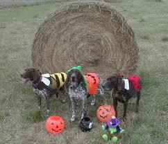 GSP Halloween 2