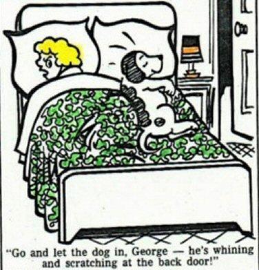 Dog on bed cartoon