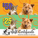 ACT Gift Certificates