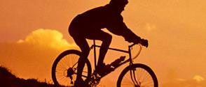 bicycle-silhouette-header.jpg
