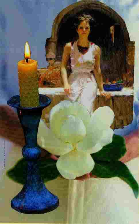 White Gardenia Woman