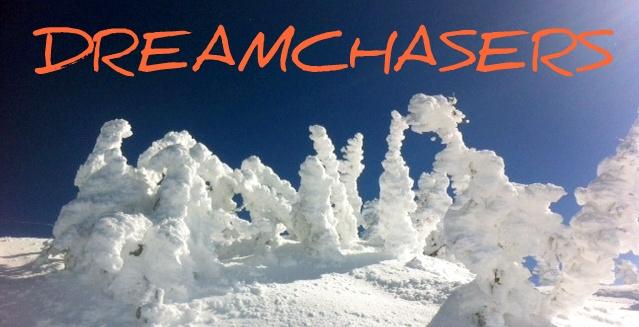 DC Snow Trees