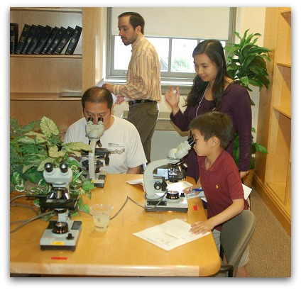 Dr rebecca groves brannock phd dissertation