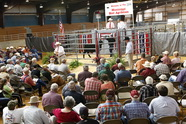 Agribition4