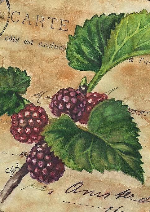 Vintage Berries