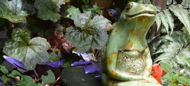 Gracious Gardens frog