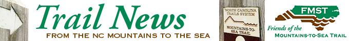 e-news masthead