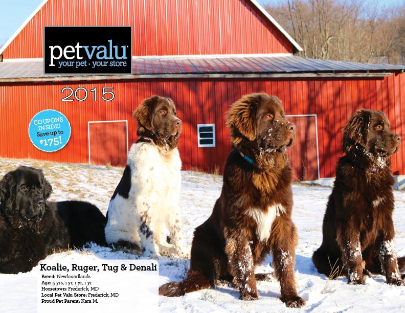 Pet Valu Dog Food Products