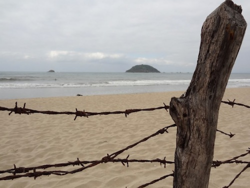 Barbed Wire and Beach Robert Koch