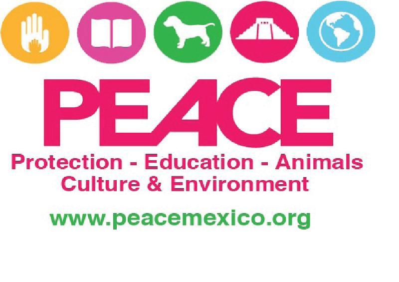 PEACE Mexico Logo