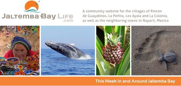 Jaltemba Bay Life Banner