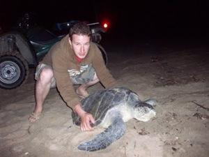 Turtle Capture