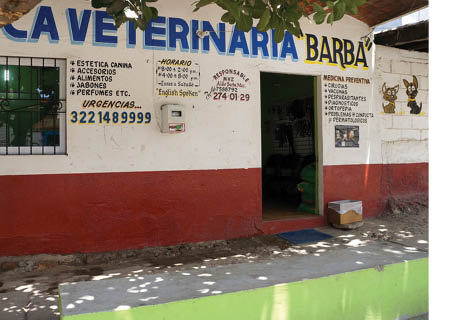 Clinica Veterinaria Barba