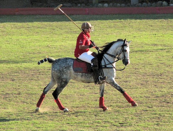 La Patrona Polo Club
