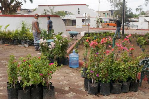 Guayabitos Plaza