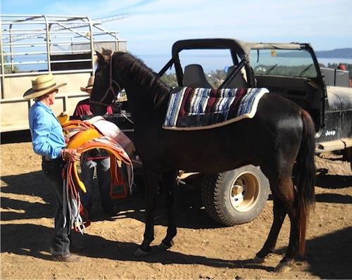 Rob Erickson JEEP First Ride