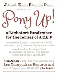 JEEP Pony Up! Poster