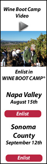 Wine Boot Camp