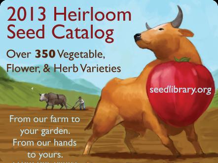 2013 catalog image