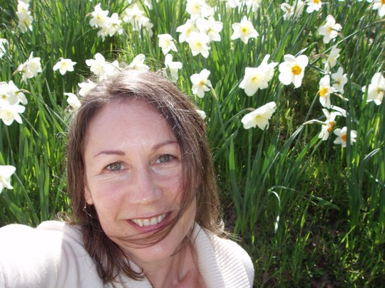 In the Dafodils