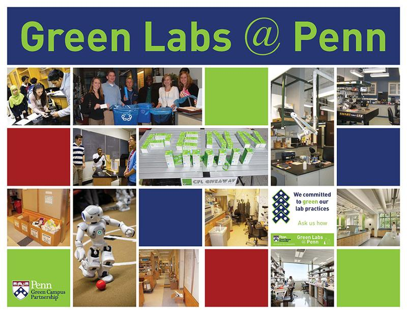 green labs cover