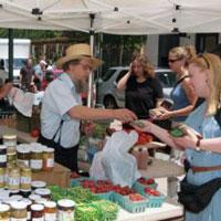 University Square Farmers' Market