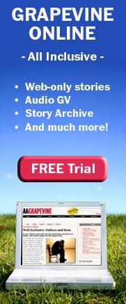 GV Online Free Trial