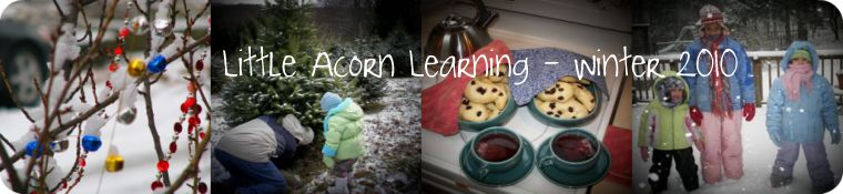 Little Acorn Winter Banner with Logo