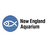 NEAq logo