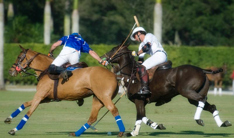 Audi, Flight Options Ready For USPA Piaget Gold Cup That Begins Friday
