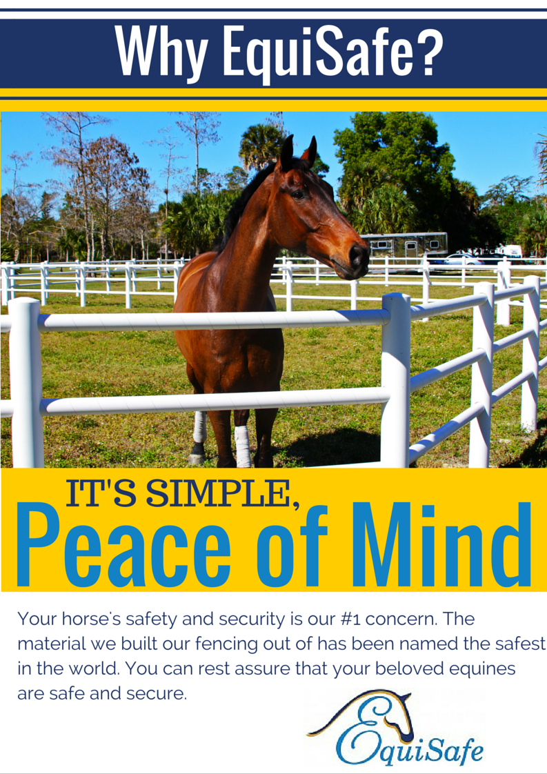Safe Horse Fencing - See the Fencing that Revolutionized Europe