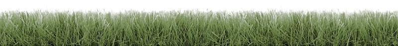 Grass Mast