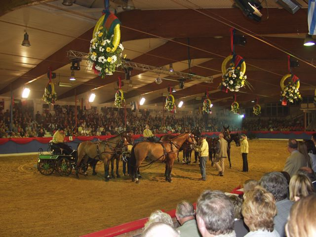 Riding Hall in Europe