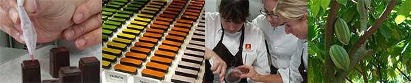 Ecole Chocolat Professional School of Chocolate Arts