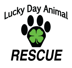 Lucky Day Animal Rescue