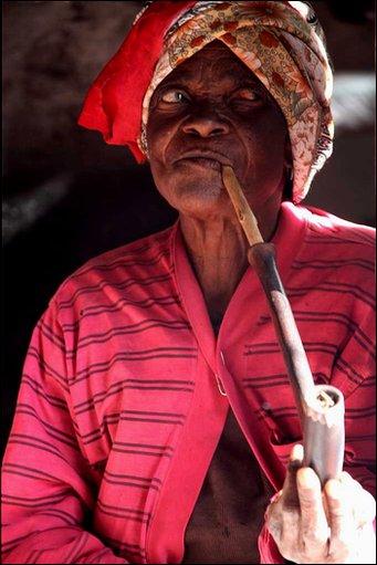 African Elder4