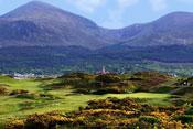 #5 Royal County Down