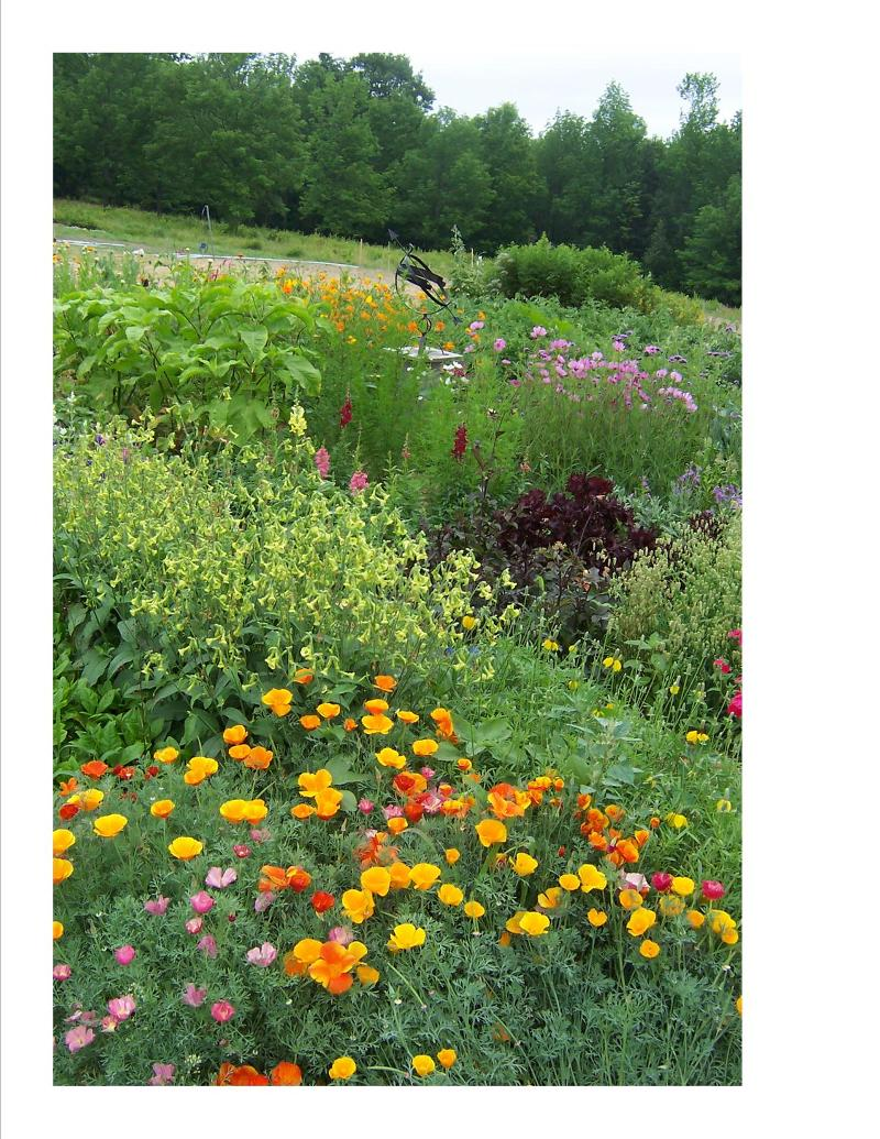 Heirloom Garden of Maine3