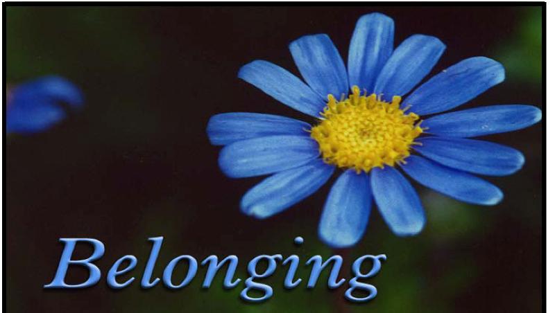 Belonging Large Logo