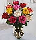 flowerpetal_roses