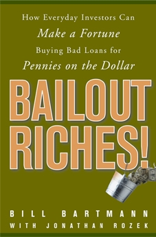 bailout riches book cover